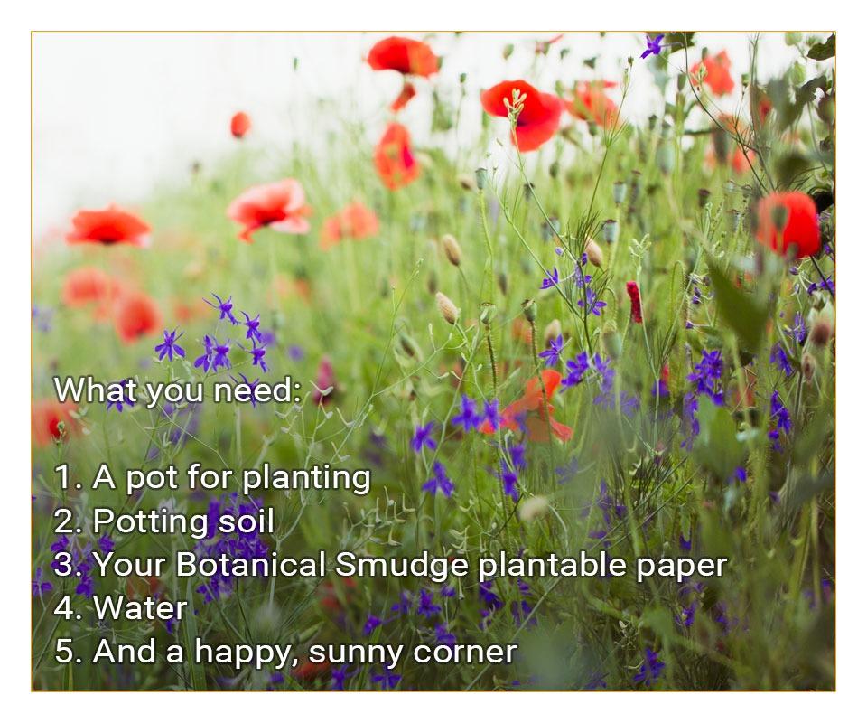 botanical smudge plantable seed paper